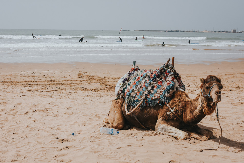 Reistips voor Marokko